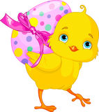 Wielkanocny kurczątko Zdjęcia Royalty Free