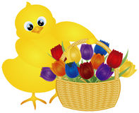 Wielkanocny kurczątko z tulipanu kosza ilustracją ilustracji