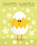 Wielkanocny kurczak Obrazy Stock