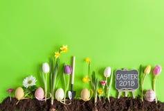 Wielkanocny kwiatu łóżka tło Obrazy Stock