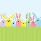 Wielkanocnego królika karta Zdjęcie Stock
