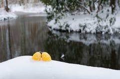 Wielkanocny tło: Jajko w snowEggs w śniegu przy Easter Obrazy Stock