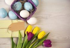 Wielkanocny tło z błękitnymi, białymi jajkami w i purpurowych i żółtych tulipanach Zdjęcia Stock