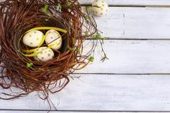 Wielkanocny tło z barwionymi jajkami w białych deskach i gniazdeczku Zdjęcia Royalty Free