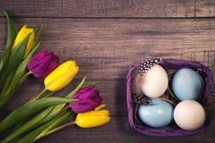 Wielkanocny tło z jajkami w gniazdeczku i tulipanach purpurowych i żółtych Zdjęcie Stock