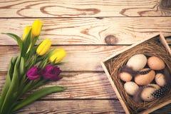 Wielkanocny tło z jajkami w gniazdeczku i tulipanach purpurowych i żółtych Zdjęcia Royalty Free