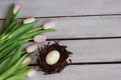 Wielkanocny tło z Wielkanocnym jajkiem w gniazdeczku Fotografia Stock