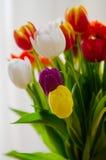Wielkanocny Tulipanowy bukiet Obraz Royalty Free