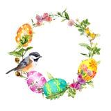 Wielkanocny wianek z barwionymi jajkami, ptakiem w trawie i kwiatami, runda ramowy akwarela Obraz Stock