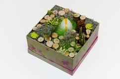 Wielkanocny wystrój w pudełku Zdjęcie Royalty Free