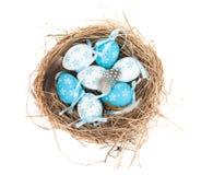 Wielkanocnych jajek gniazdeczko Obrazy Royalty Free