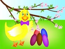 Wielkanocnych jajek kaczątko Obraz Royalty Free