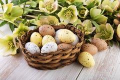 Wielkanocnych jajek Koszykowi pastelowi kolory Obrazy Royalty Free