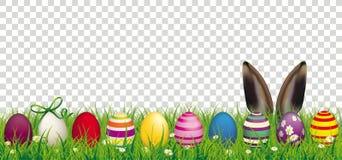 Wielkanocnych jajek królika ucho trawy Przejrzysty chodnikowiec ilustracji