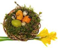 Wielkanocnych jajek ręka malująca w łozinowym wianku, ptasi ` s gniazdeczko mech Fotografia Royalty Free