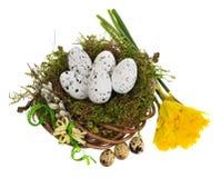 Wielkanocnych jajek ręka malująca w łozinowym wianku, ptasi ` s gniazdeczko mech Zdjęcie Stock