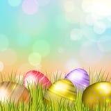 Wielkanocnych jajek tło Fotografia Stock