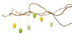 Wielkanocy gałąź z Wielkanocnymi jajkami, faborkami i kurczątkiem -, Fotografia Stock