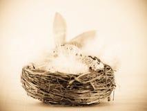 Wielkanocy gniazdeczko i Easter królika ucho (1) zdjęcie stock
