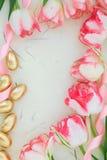 Wielkanocy granica Zdjęcia Royalty Free