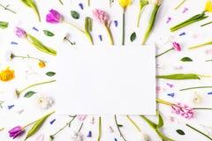 Wielkanocy i wiosny mieszkanie kłaść na białym tle kosmos kopii zdjęcie stock