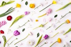 Wielkanocy i wiosny mieszkanie k?a?? na bia?ym tle zdjęcia royalty free