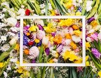 Wielkanocy i wiosny mieszkanie nieatutowy kwiat światła playnig tło kosmos kopii obrazy royalty free