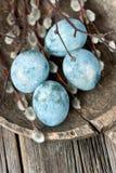Wielkanocy wciąż życie z colorfull jajkami zdjęcie royalty free