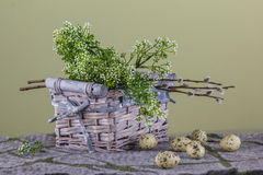 Wielkanocy Wciąż życie z koszem, białymi małymi kwiatami i wierzbowym br, Obraz Royalty Free
