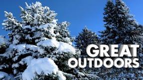 Wielki śnieg Zakrywający Outdoors drzewa Na zewnątrz natur słów ilustracji