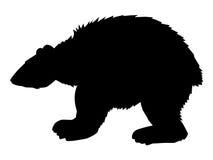 wielki biegunowy bear Zdjęcia Royalty Free