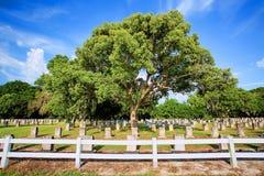 Wielki cmentarz, cmentarz Z Wieloskładnikowymi Headstones zdjęcie stock