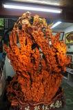 Wielki drzewo korzeń Sculpt sztukę Obraz Royalty Free
