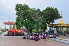 Wielki drzewo przy wierzchołkiem Kyaiktiyo pagoda, Mon stan, Birma z złotą skałą na dobrze za szklanym pokojem Obrazy Stock