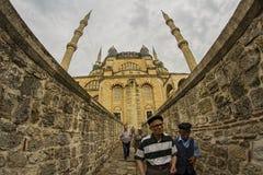 wielki Edirne selimiye indyk meczetowy Fotografia Royalty Free