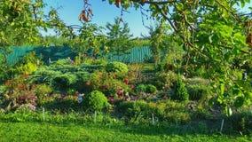Wielki flowerbed zdjęcie royalty free