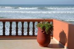 Wielki gliniany garnek z rośliny stojakami na tarasie przegapia Atlantyckiego ocean na słonecznym dniu Obraz Royalty Free