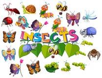 Wielki insekt paczki set ilustracja wektor
