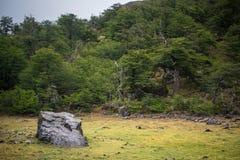 Wielki kamień kłama w polanie po środku lasowego Shevelev Zdjęcie Stock