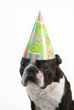 wielki kapelusz urodzinowy. Obraz Stock