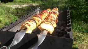 Wielki kebab Fotografia Stock