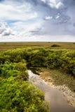 Wielki krajobraz przy błota parkiem narodowym Obrazy Royalty Free