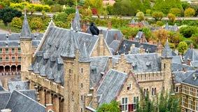 wielki kruków dach Zdjęcie Royalty Free