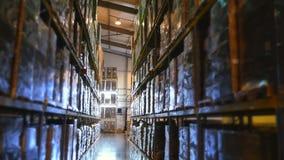 Wielki magazyn z wysokimi stojakami towary, pełno Storehouse w przedsięwzięciu, fabryka zbiory wideo