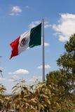 Wielki Meksykańskiej flagi falowanie w wiatrze zdjęcie stock