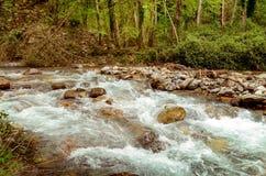 Wielki miejsce relaksować w Pollino parku narodowym Włochy obrazy stock