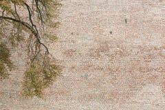 Wielki Mur starych cegieł ośniedziały rocznik Obraz Royalty Free