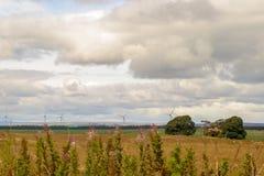 wielki niebieski chmura wschodu brzegowego farmy Północnej nieba pogody biały miły wiatr Zdjęcia Stock