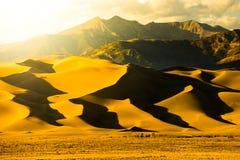 Wielki piasek diun Gorący Złoty zmierzch Obraz Royalty Free