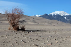 Wielki piasek diun park narodowy Obrazy Royalty Free